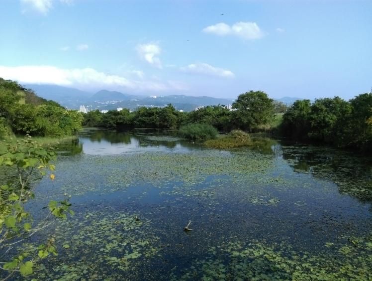 Guandu Nature Park wetland, Taipei